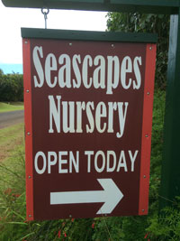 Kauai Seascapes Nursery Open Sign