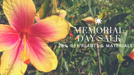 memorial-day-sale-20-off