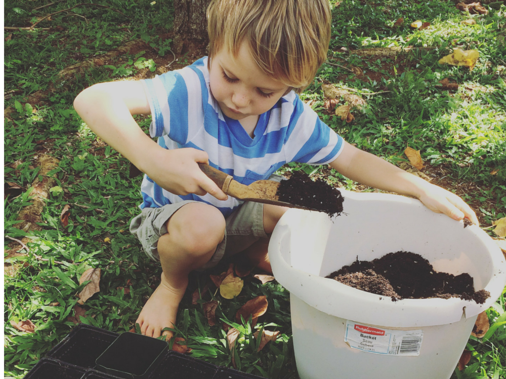 5 earthy projects to get your kids into the garden kauai seascapes nursery inc