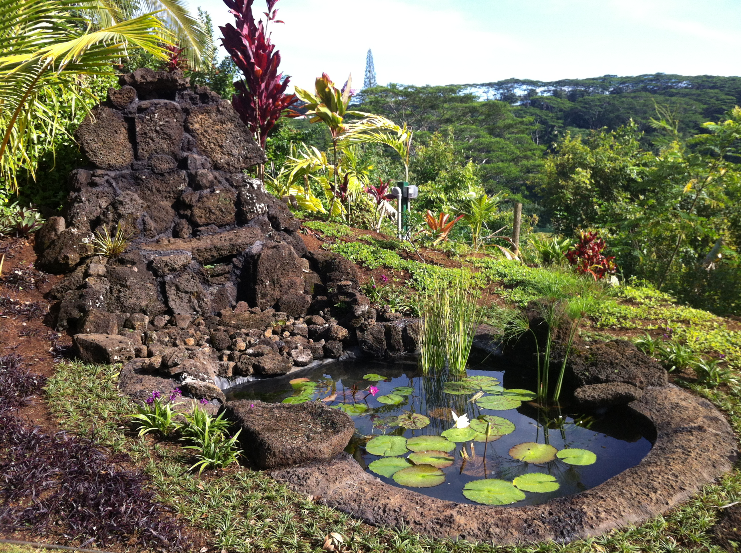 how to create a backyard retreat in 5 easy steps kauai seascapes