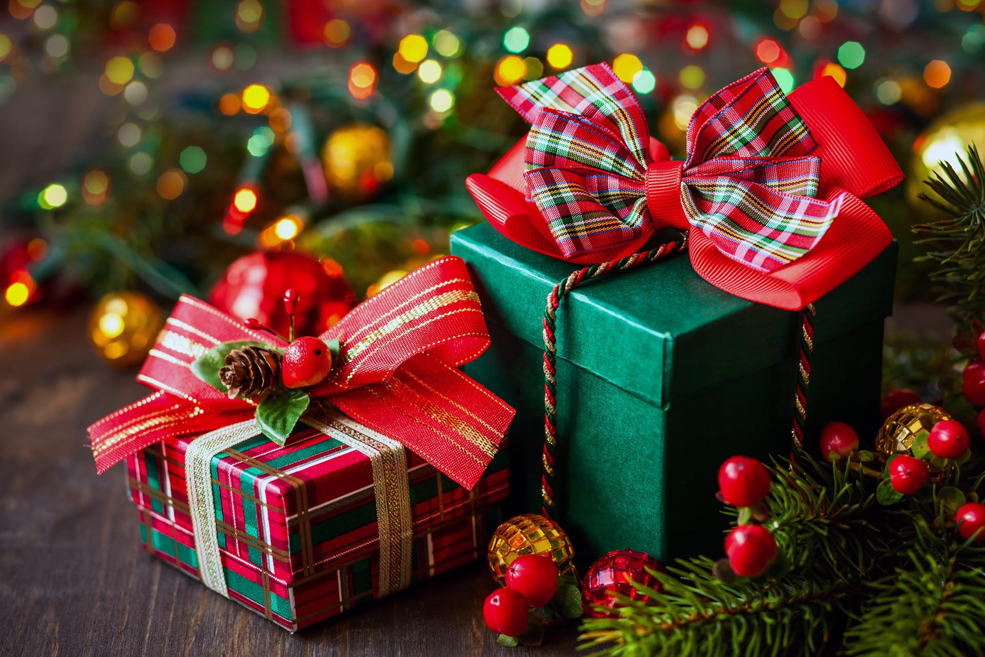 Top 10 Christmas Gifts from the Nursery - No Green Thumb ...